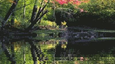 물에 비치는 사진 만들기